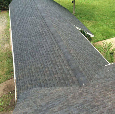 Roof Leak Repair 11955